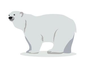 Polar Bear Cartoon Flat Vector Illustration