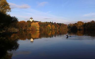 Two ducks are seen on river Main near Hanau