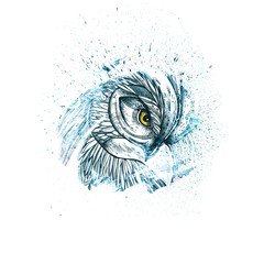 Beautiful illustration with owl. The owl inside ink spot. It can be used for printing on t-shirts and idea for tattoo. Original background for your design.
