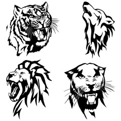 Isolated illustration of the head of a panther, a tiger, a wolf and a lion