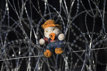 A teddy bear is placed on razor wire at the border crossing in Horgos