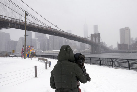 The Manhattan skyline and the Brooklyn Bridge is seen in the background as a woman holds her pet dog after a snow storm in New York