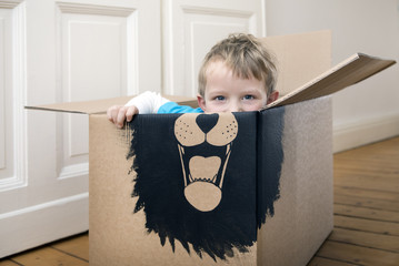 Boy inside a cardboard box painted with a lion