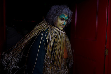 Paul McKenzie is seen dressed in a straw costume during an Irish tradition of Hunting of the Wren festival held every St. Stephen's Day in Dingle
