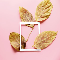 Dried yellow leaves White picture frame and on pink background ,copy space,minimal style