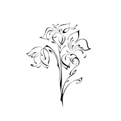 ornament 33. stylized flowers on a white background