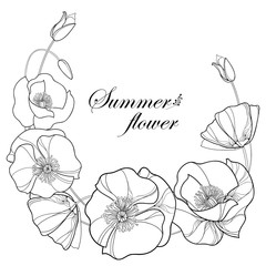 Vector wreath with outline Poppy flower and bud in black isolated on white background. Floral elements in contour style with poppy for summer design and coloring book. Symbol of Remembrance Day.