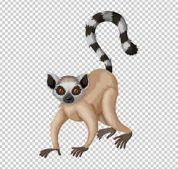 Cute lemur on transparent background