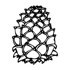 Pinecone Pine Lump Isolated On a White Background Doodle Cartoon Hand Drawn Sketch Vector.