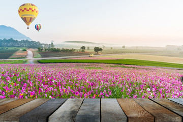 wood floor on balloon over the cosmos flower of grassland