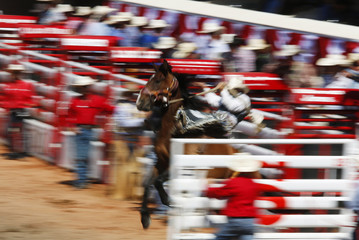 Wright of Milford, Utah explodes out of the gate on the horse Honky Tonk in the saddle bronc event during the Calgary Stampede rodeo