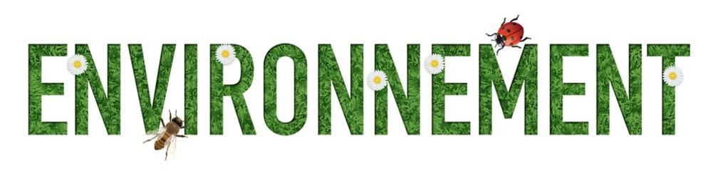 environnement - mot - écologie - présentation - fleur - coccinelle - abeille - panneau