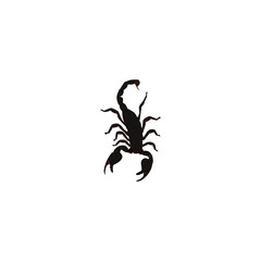 Realistic Scorpion Element. Vector Illustration Of Realistic Poisonous Isolated On Clean Background. Can Be Used As Scorpion, Insect And Poisonous Symbols.