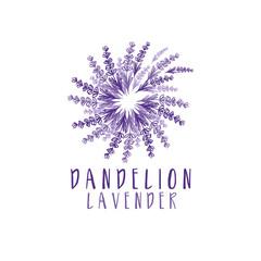 Illustration of concept logo of dandelion with lavender. Vector