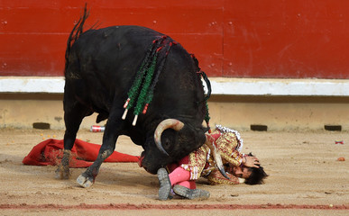 Peruvian bullfighter Andres Roca Rey tries to protect himself from a bull during a bullfight at the San Fermin festival in Pamplona