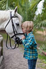 Boy kissing horse in yard