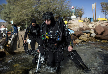Israeli photographer Felten enters the water before an underwater photo shoot in the Red Sea in Eilat