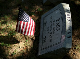 """The gravestone of """"Rags"""", a WWI mascot dog of the Army's 1st Division, is seen at the Aspin Hill Memorial Park in Aspen Hill"""