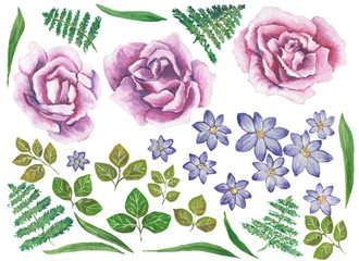Watercolor painted collection. Watercolor Flowers Elements for invitation, wedding or greeting cards.