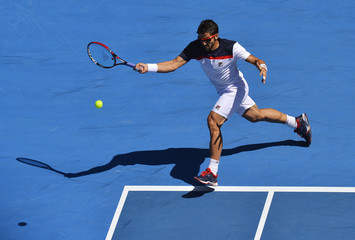 Janko Tipsarevic of Serbia hits a return to Nicolas Almagro of Spain during their men's singles match at the Australian Open tennis tournament in Melbourne