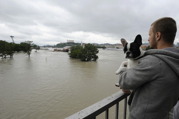 A man holding a dog looks at flood waters from the Danube river in Bratislava