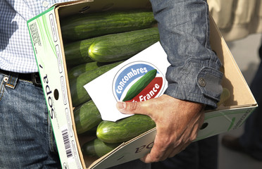 A French farmer carries cucumbers in a street as he approaches the Elysee Palace in Paris