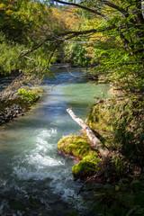Idyllic nature of Oirase Gorge, Aomori, Japan