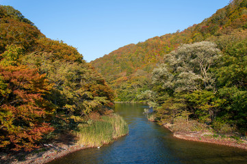 Idyllic nature of Oirase Gorge on a sunny day in fall, Aomori, Japan