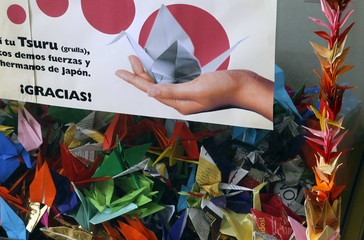 A box containing origami cranes to support Japan's earthquake and tsunami victims is seen at the Peruvian Japanese Cultural Center in Lima