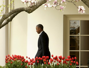 United States President Obama departs the White House near tulips and magnolia blossoms for a day trip to North Carolina in Washington