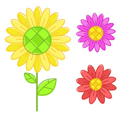 Flashy color Sunflower isolated vector