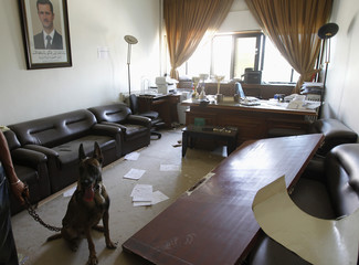 A security official and a police dog inspect an office after a bomb exploded inside a Syrian state television and radio building in Damascus