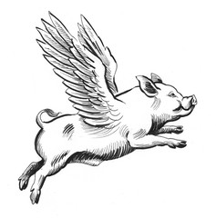 Flying pig. Retro styled ink illustration