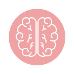 brain human isolated icon vector illustration design