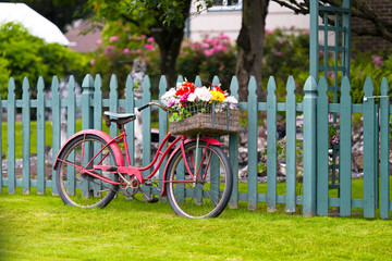 Aluminium Prints Bicycle Old vintage bicycle with basket of flowers in baggage