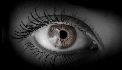Macro shot of female human eye in black and white toned.