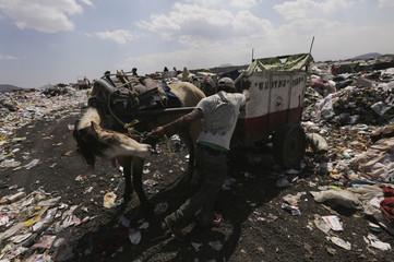 A garbage collector, with his horse and cart, prepares to unload rubbish at the municipal dump in Nezahualcoyotl