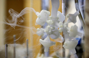 A model of a functioning human lung that can be used to simulate chronic diseases and their treatments is seen in Brno