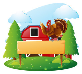 Wooden sign template and turkey in farmyard