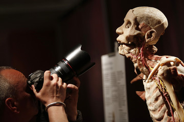 "A photographer takes pictures of a preserved human body, on display at the ""Bodies Revealed"" exhibition in Sofia"