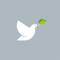 Geometric style vector logo template or icon of white dove with olive branch on gray background