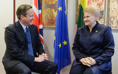 Britain's Prime Minister Cameron attends a bilateral meeting with Lithuania's President Grybauskaite at a European Union leaders summit in Brussels