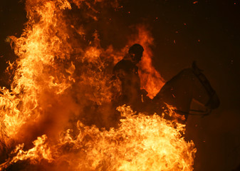 """A man rides a horse through flames during the annual """"Luminarias"""" celebration on the eve of Saint Anthony's day in  San Bartolome de Pinares"""