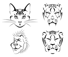 Set of black images of cats on a white background. Сat, tiger, lion. Vector illustration