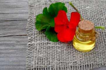 Geranium essential oil in a glass bottle with flower and leaf of the geranium plant on wooden background.Geranium oil for spa,aromatherapy and bodycare.Extract oil of geranium.Selective focus.