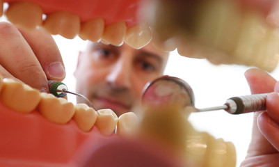 Dentist Sevan Arzuyan poses for an illustration picture with a teeth model at his surgery room in Hanau near Frankfurt
