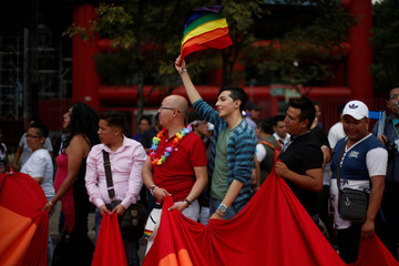 A participant holds up a rainbow flag during an annual Gay Pride Parade in Mexico City