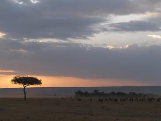 Sunrise and Sunset, Kenya, Africa