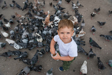 Little caucasian boy catching and playing with pigeons on city place