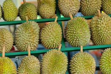 Durain Fruit Display to Sell
